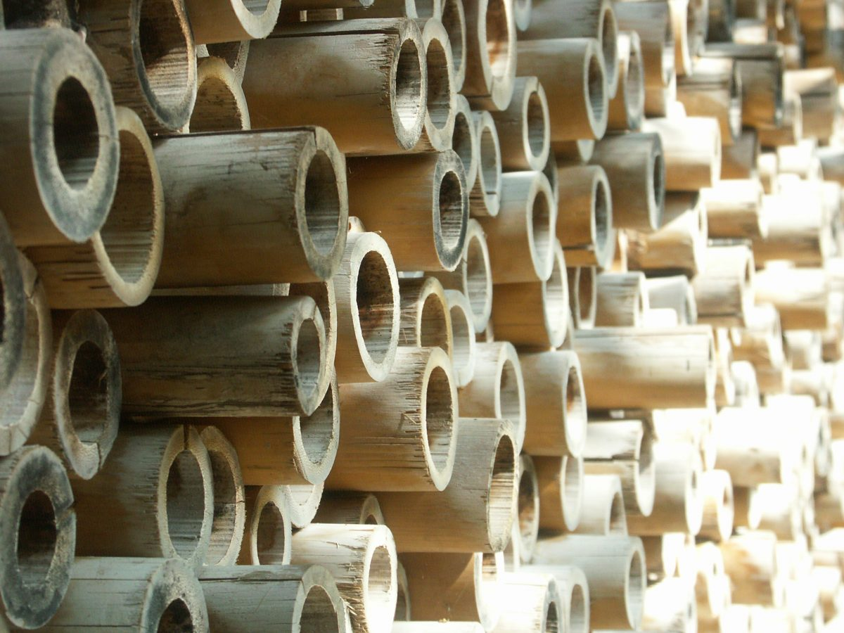 Bamboestieken - bamboo building